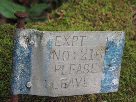 deadwood sign 2