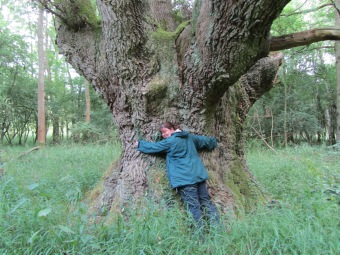 rebecca tree hugging 2