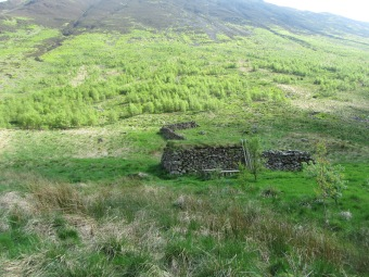 NT155125 14_5 Carrifran old sheep shelter 2