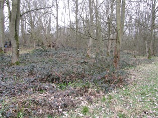 low bramble recovery