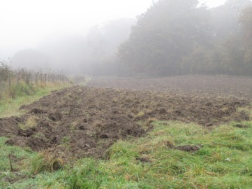 12_10 upper seeds ploughed