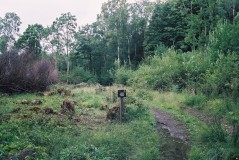coppiced How Ridding jun 03