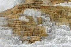 19_9 Mammoth Springs features , travertine terraces